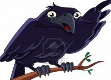 Deictic Gestures in Ravens