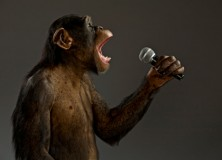 You'll never teach a monkey how to sing