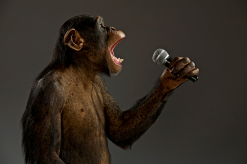 MonkeySing - Hitting a high note - Photos Unlimited