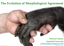 Evolang Previews: The Evolution of Morphological Agreement