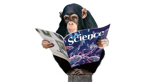 chimp science