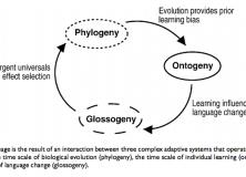 Language Evolution Or Change